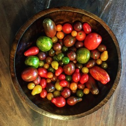 Charleston's downtown farmer's market. Tomatoes.